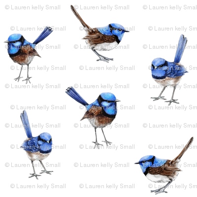 Wren clipart small bird Birds Wren thistleandfox fabric Blue