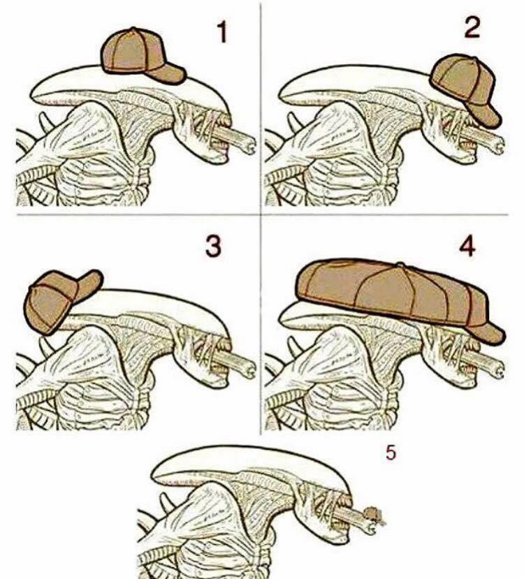 Xenomorph clipart classic Hat? Xenomorph  would a