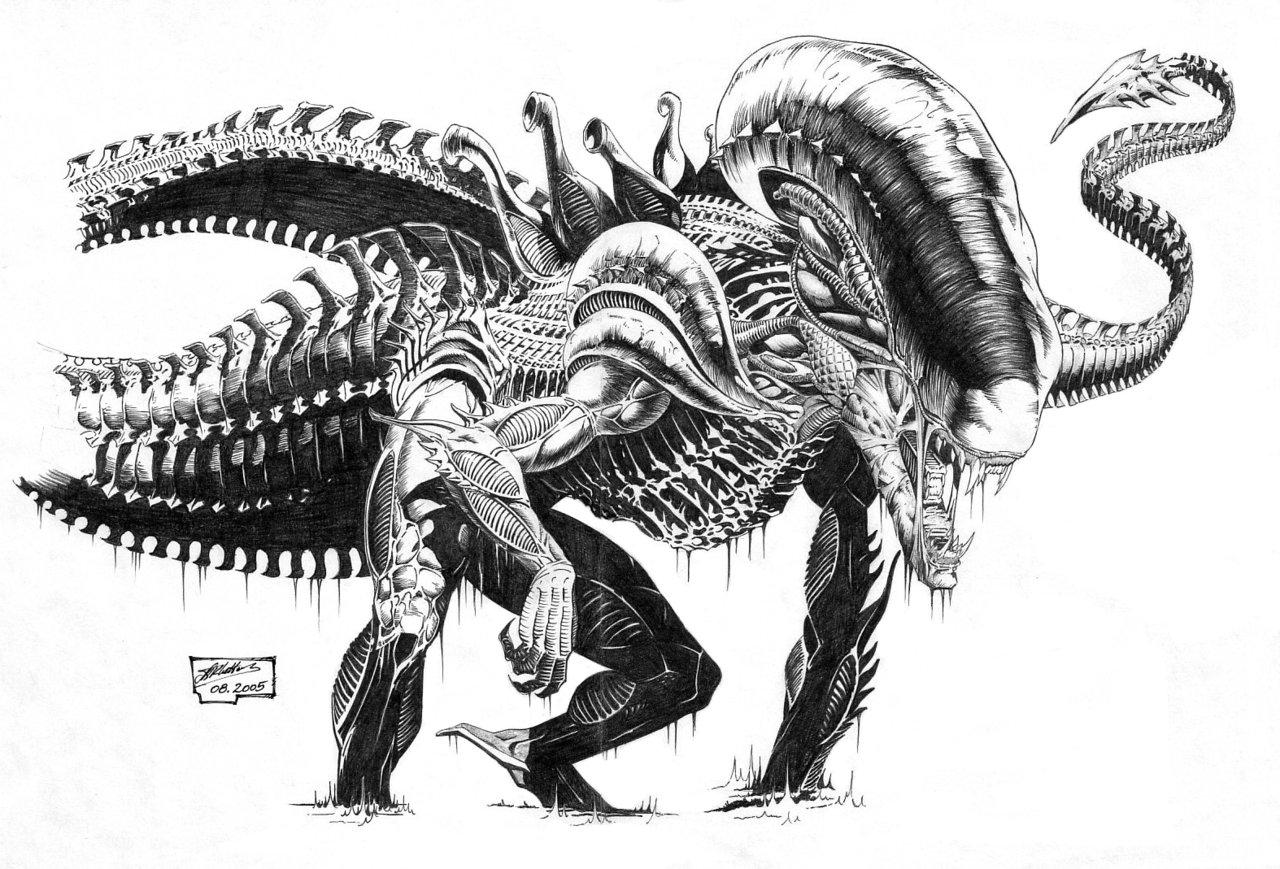 Xenomorph clipart deviantart Xenomorph Rex  Rex Hunter
