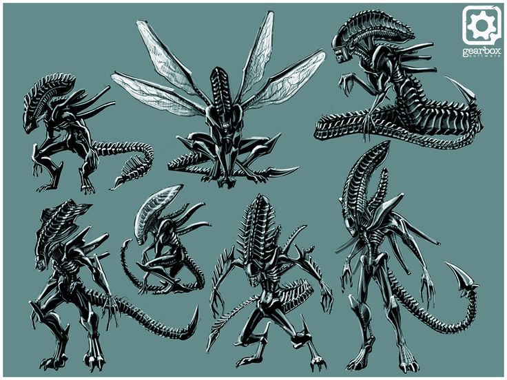 Xenomorph clipart proto On Xenomorphs about best &