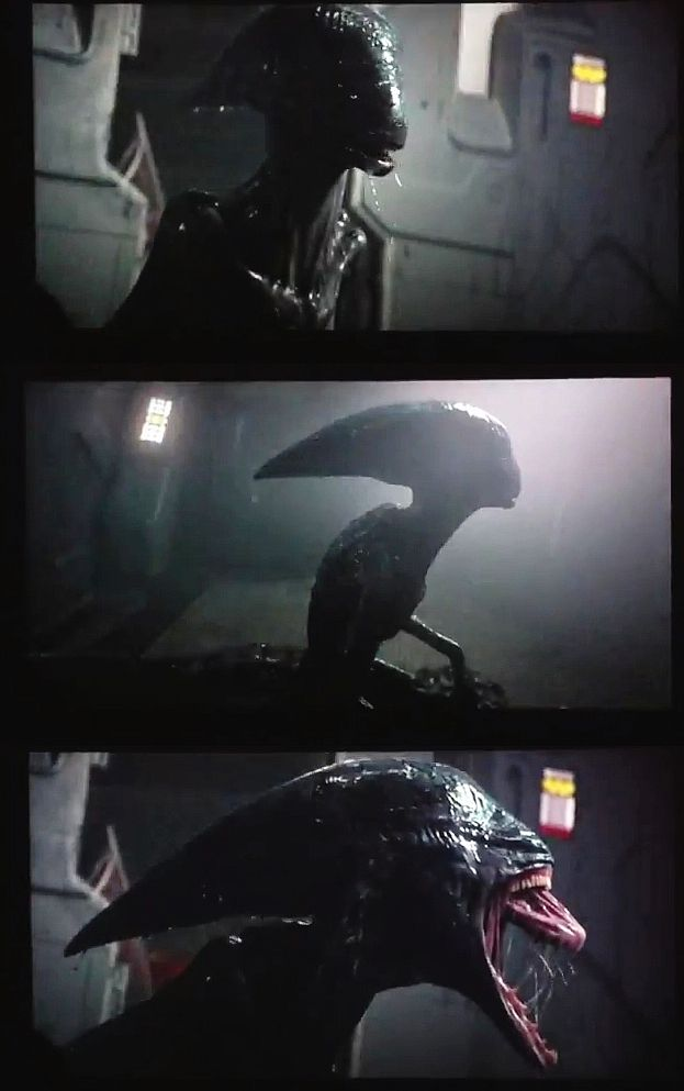 Xenomorph clipart proto Images Aliens 68 (PROMETHEUS) Monsters