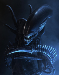 Xenomorph clipart six Of Best Portrayal Forum the