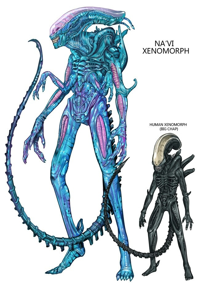 Xenomorph clipart yautja Best or and xenomorphs and