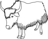 Yak clipart black and white Search Yak 41  Size: