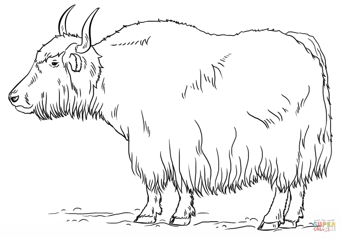 Yak clipart tree Free coloring Pages Printable the