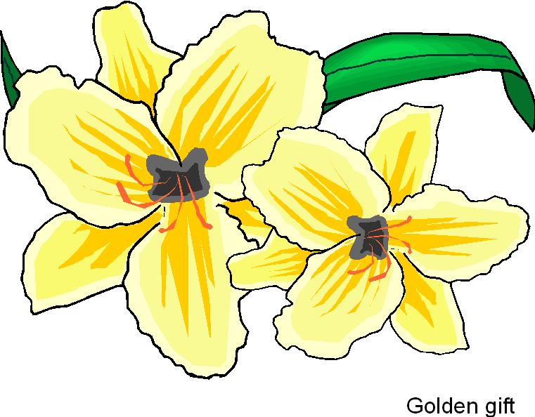 Yellow Flower clipart february flower Gift Clipart Flower Free Free