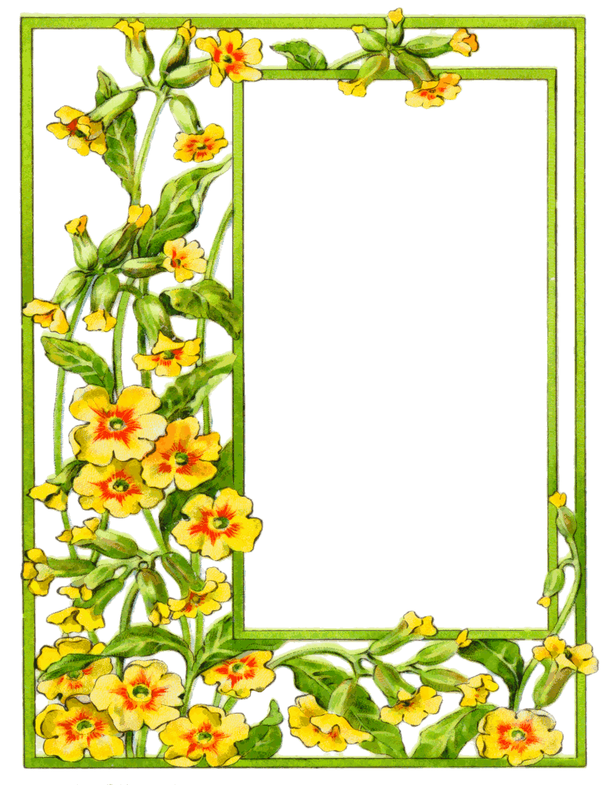 Yellow Flower clipart summer border Invitation tag for Yellow Summer