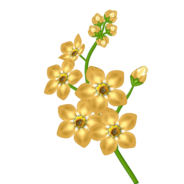Yellow Flower clipart transparent For png Transparent image download