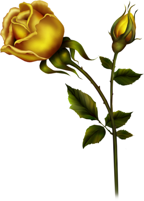 Bud clipart rose bud Full View PNG Bud ?
