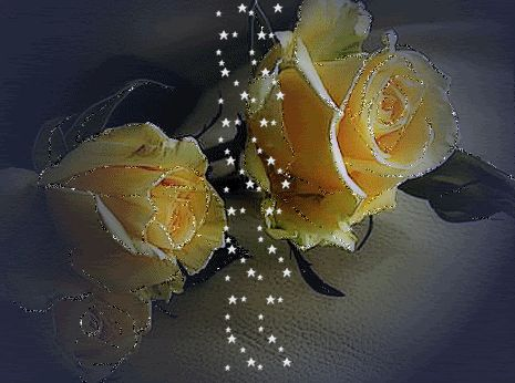 Yellow Rose clipart animated GIFS  FLOWERS Pinterest images