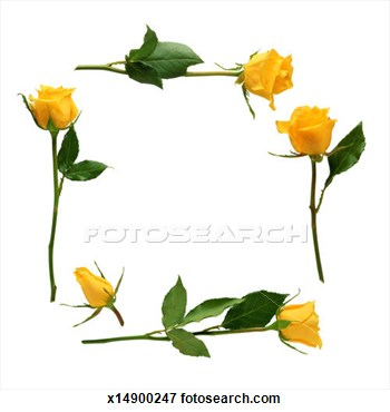 Yellow Rose clipart boarder Yellow Clipart Rose Download Yellow