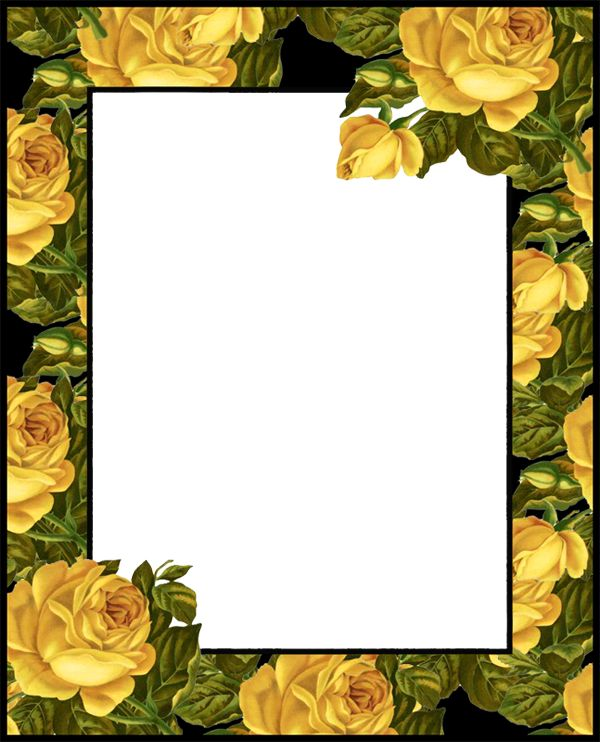 Yellow Rose clipart boarder Molduras PNG with Pinterest Photo