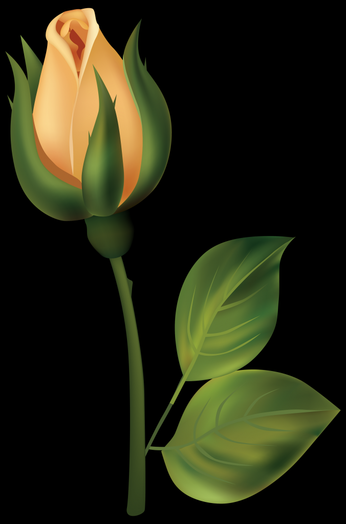 Yellow Rose clipart bud Clipartpng Best Clipart Png The