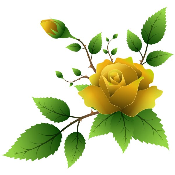 Yellow Rose clipart green rose Fangol RGBStock I by on