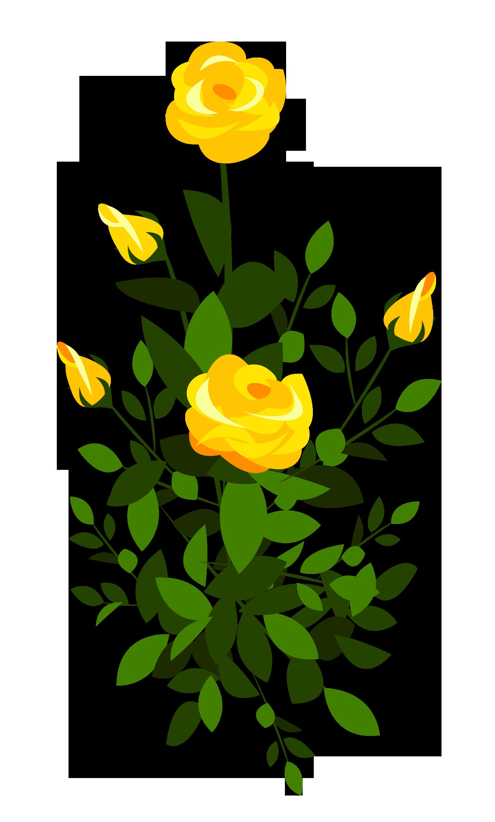 Rose clipart rose plant #5