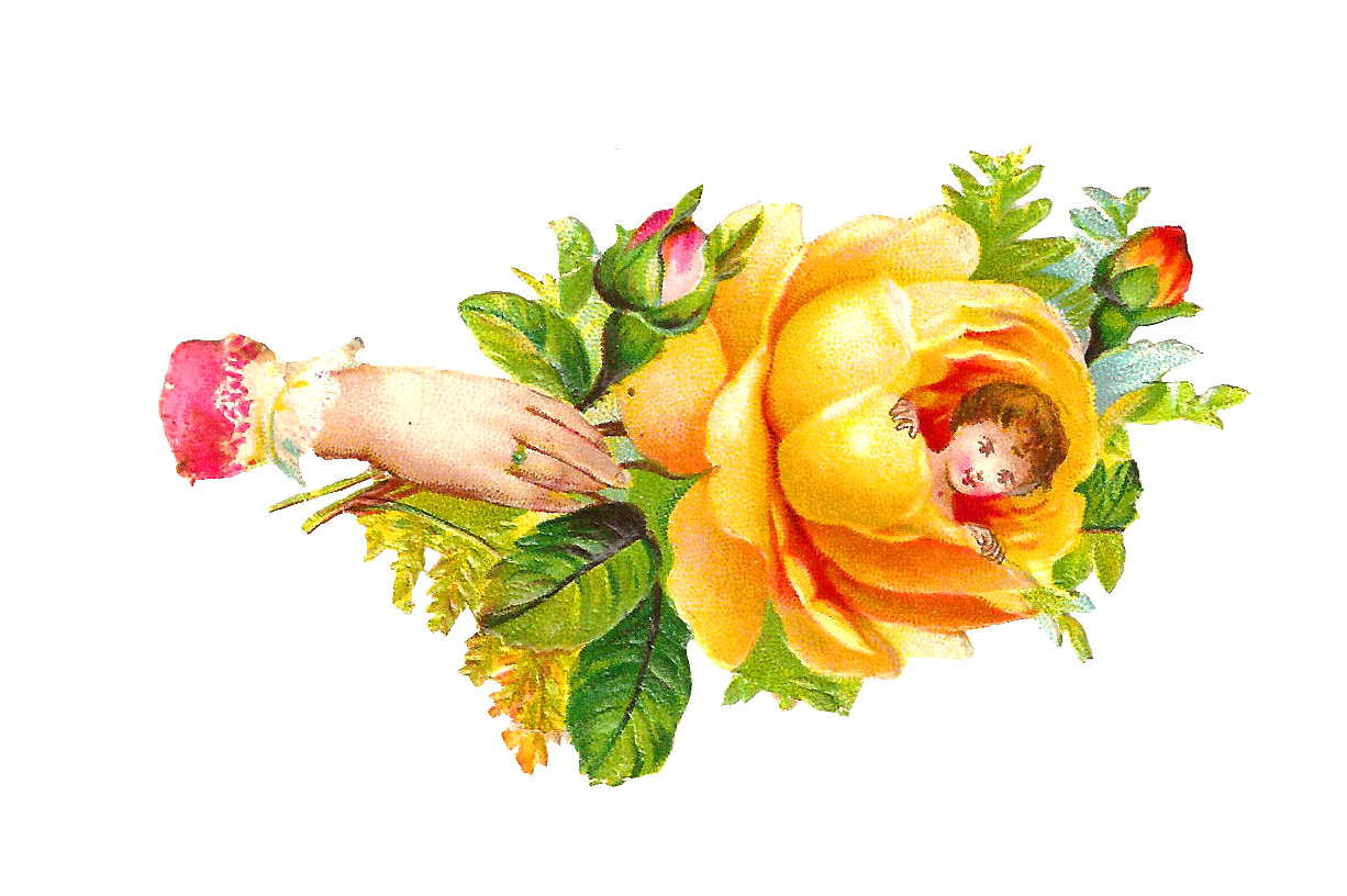 Yellow Rose clipart love flower Rose Clip Cliparts Roses Scrap