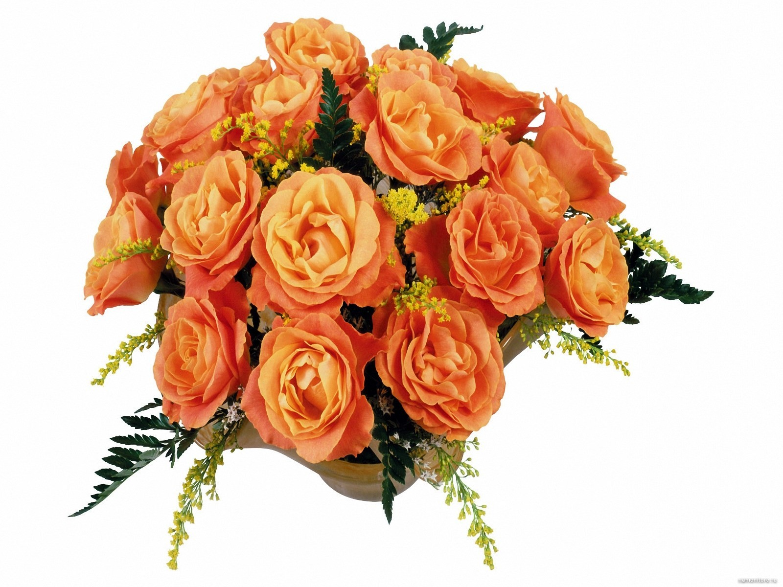 Yellow Rose clipart orange rose Clipart roses roses orange yellow