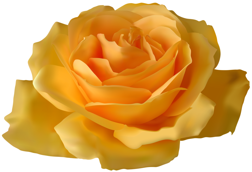 Yellow Rose clipart orange rose ROSE Clipart Yellow Clipart Rose