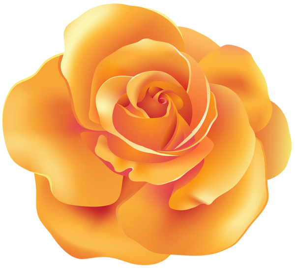 Yellow Rose clipart orange rose Clip Yopriceville PNG Clip