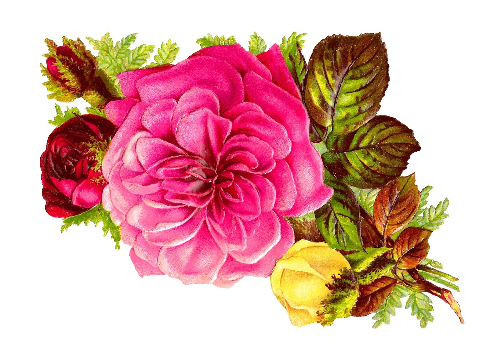 Bouquet clipart pink rose bouquet Clip and Images: Pink flower