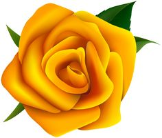 Yellow Rose clipart red #14