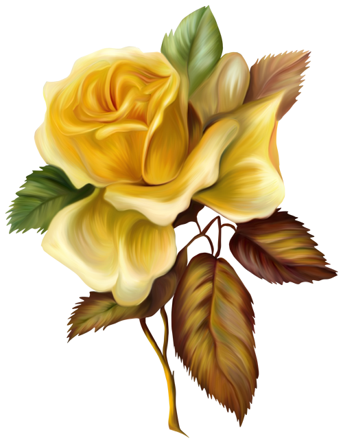 Yellow Rose clipart rose painting #3