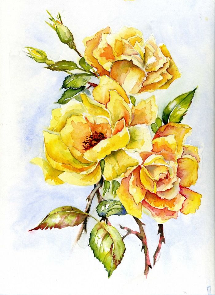 Yellow Rose clipart rose painting #8