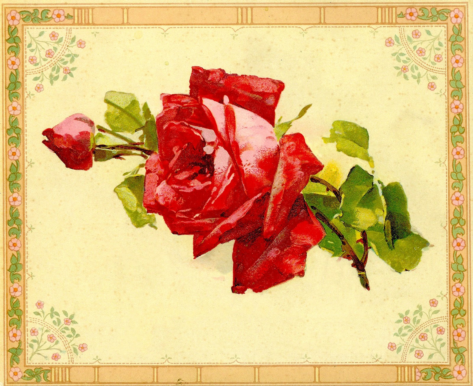 Yellow Rose clipart rose painting #11