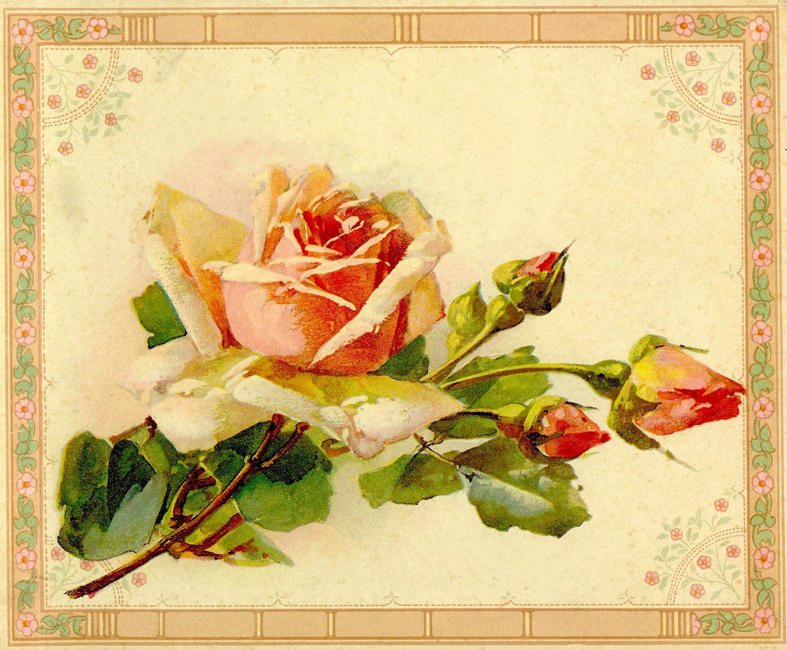 Yellow Rose clipart rose painting #2