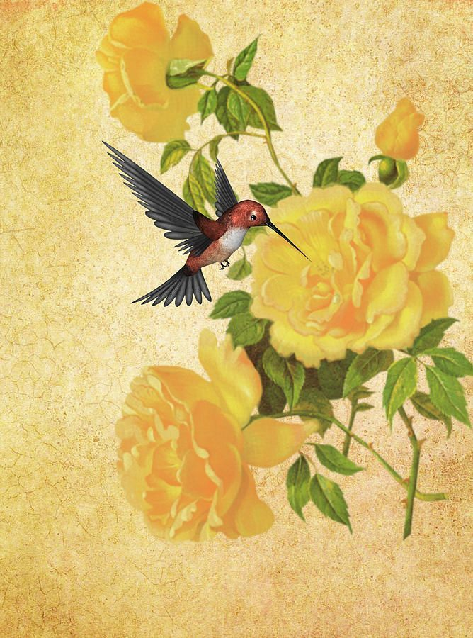 Yellow Rose clipart rose painting #4