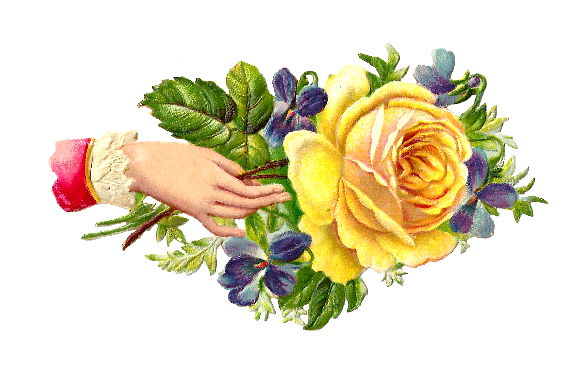 Yellow Rose clipart rose painting #9