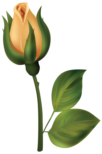 Yellow Rose clipart rosebud #4