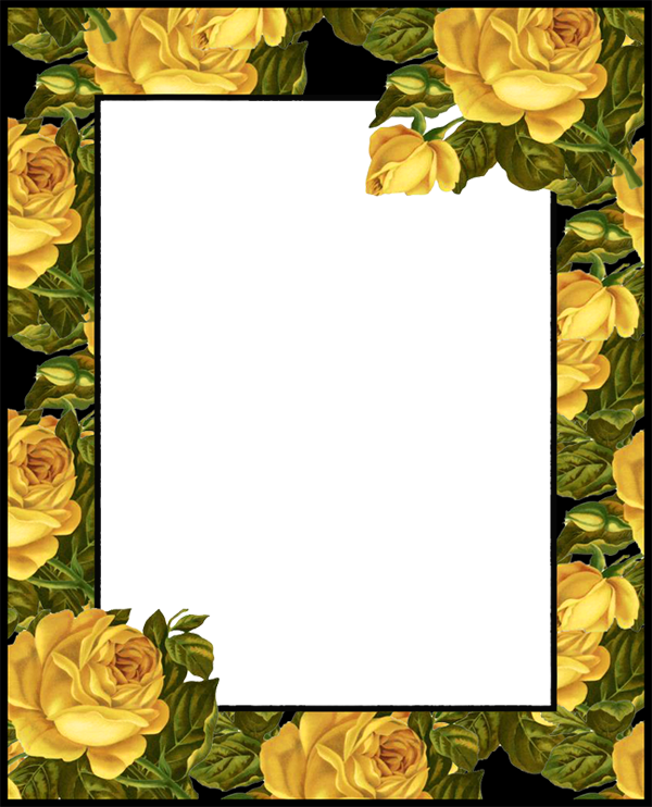 Yellow Rose clipart transparent #7