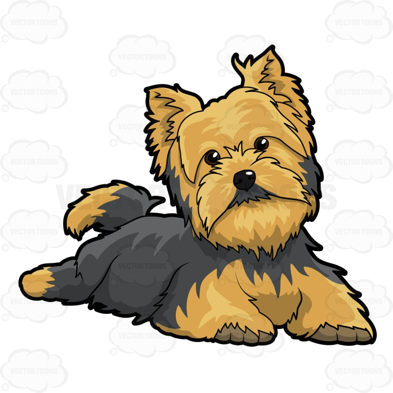 Yorkies clipart Clipart Dog On On Floor