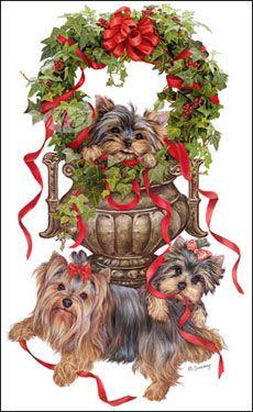 Yorkies clipart christmas Pinterest Yorkie's  Yorkie images