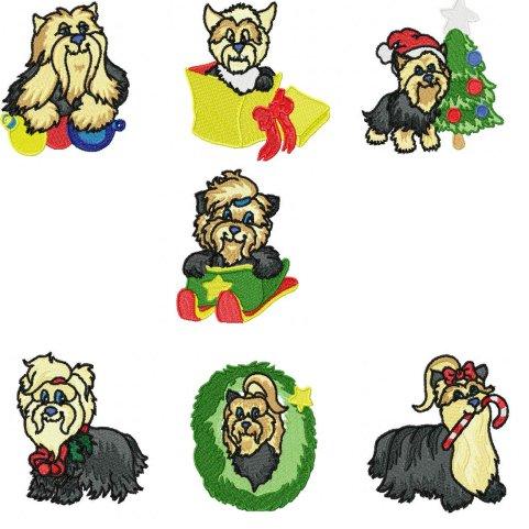 Yorkies clipart christmas  Zen Christmas Yorkie Sheffield