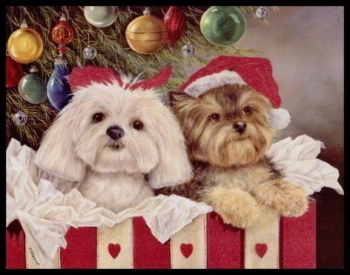 Yorkies clipart christmas Day 254 16  of