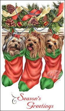 Yorkies clipart christmas About best Find Christmas and