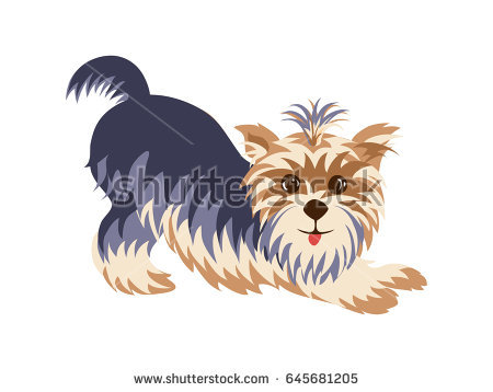 Yorkies clipart cute Terrier yorkies Stock Cute Yorkshire