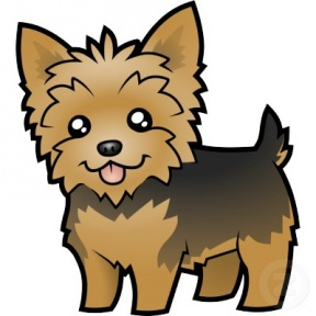 Yorkies clipart cute Terrier Zone Cliparts Yorkie Boston