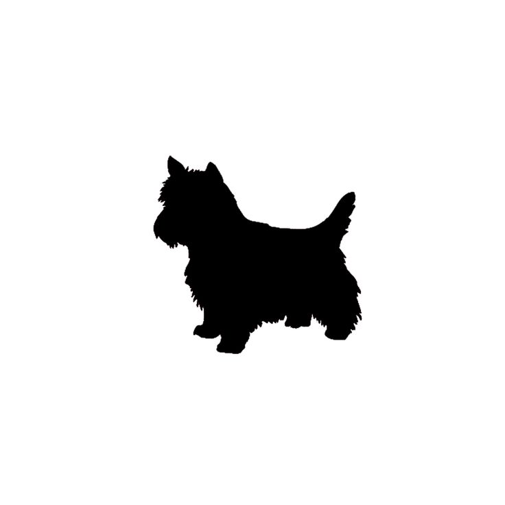 Yorkies clipart pet On Pinterest images Yorkie dog