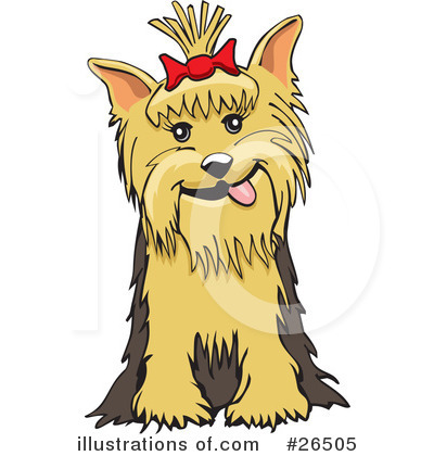 Yorkies clipart pet David #26505 Rey by by