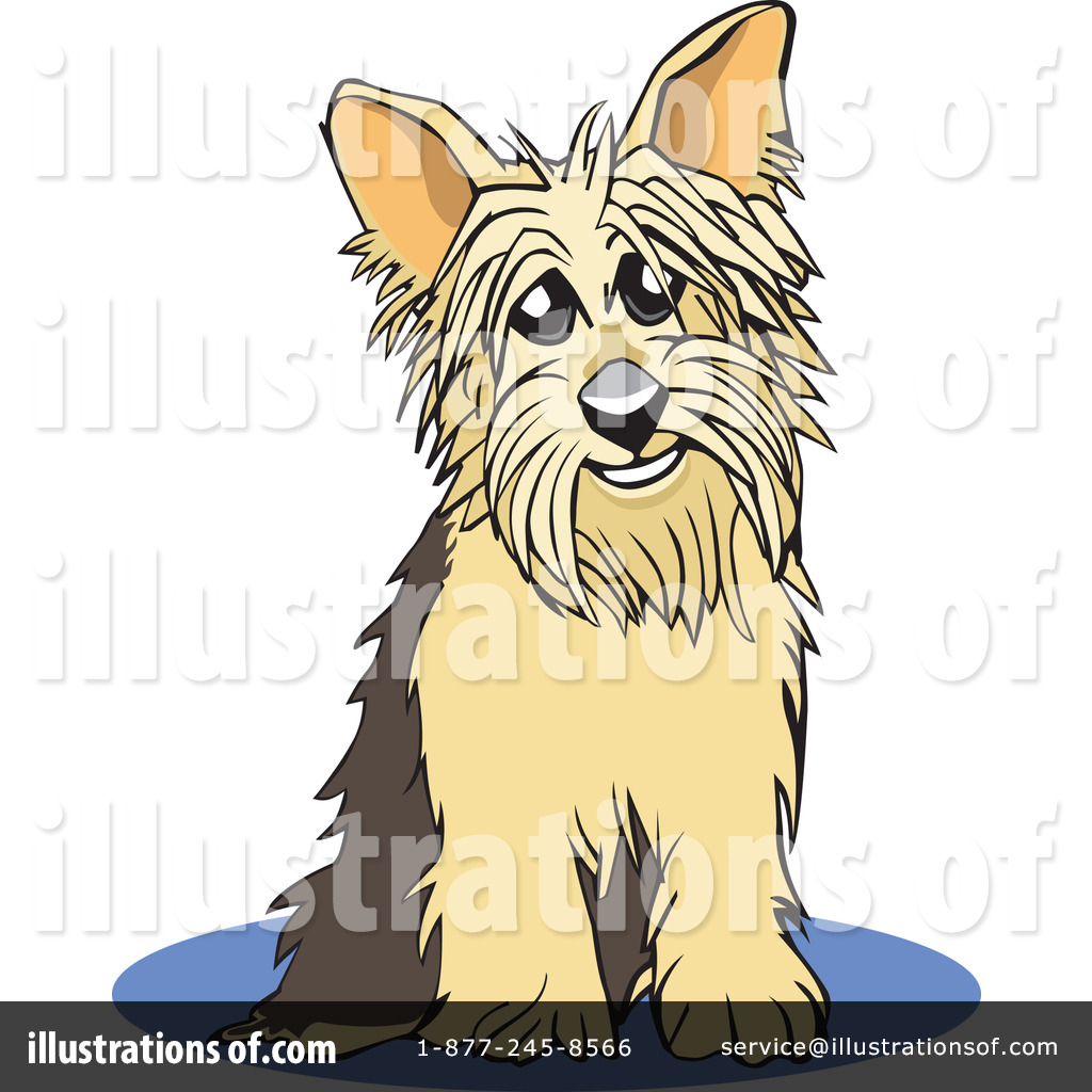 Yorkies clipart pet David #26506 Rey by by