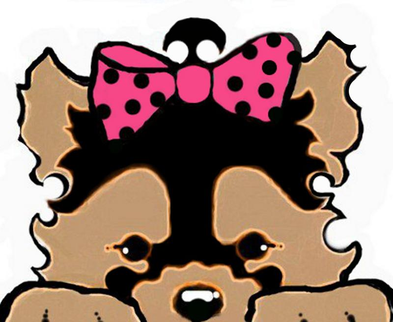 Yorkies clipart poodle Ohpuppylove maltipoos com poodle www