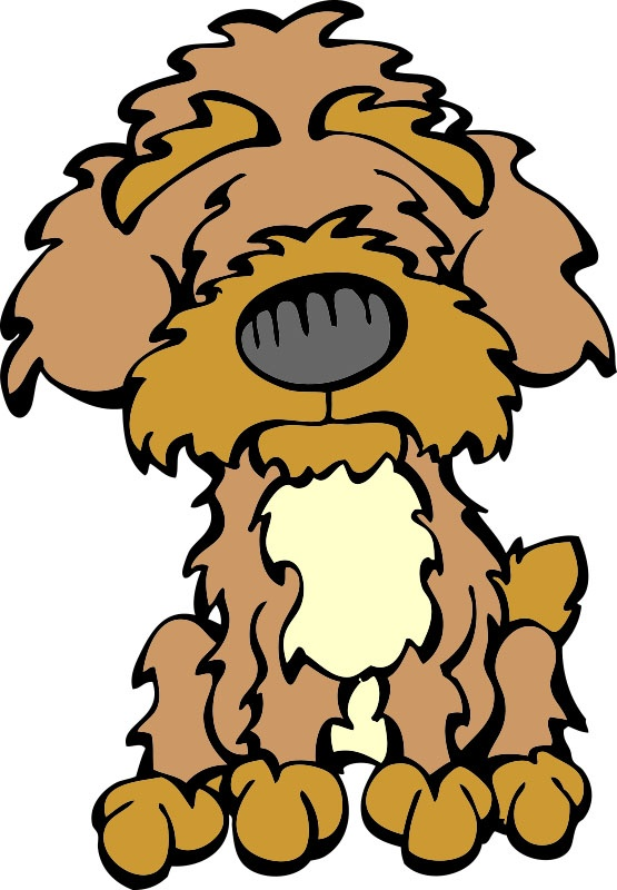Yorkies clipart poodle Mutt Yorkipoo about Chugs best