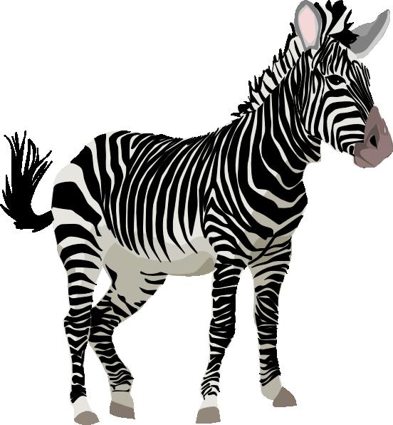 Zebra clipart Zebra%20clipart Images Free Clipart Zebra
