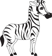 Zebra clipart Zebra Pictures Art Illustrations Clipart