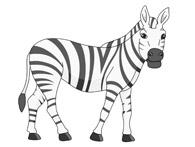 Zebra clipart Zebra Art Clip Graphics Zebra