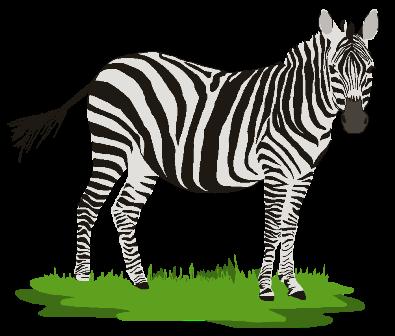 Zebra clipart grass Colorful clipart Cliparts Zebra Cliparts