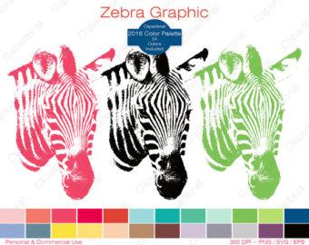 Zebra clipart star Graphic Art STAR Zoo Use